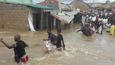 Photo of Oba's palace submerged in flood, scores of residents rendered homeless in Ekiti